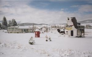 Snowy beagles